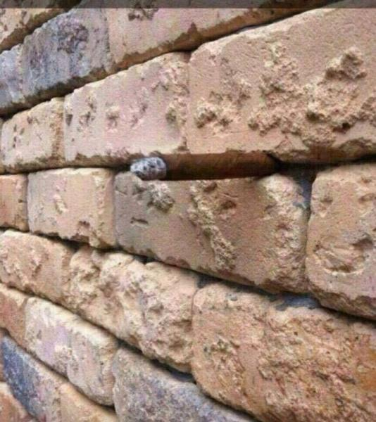 illusion mur